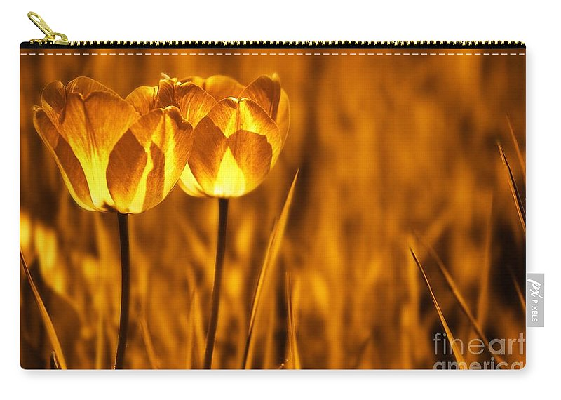Tulips Carry-all Pouch featuring the photograph In A Perfect World by Jacky Gerritsen