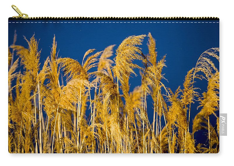 Marsh Carry-all Pouch featuring the photograph In And Out Of Focus by Albert Seger