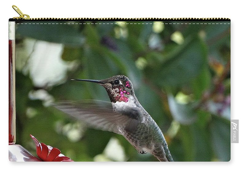 Aves Carry-all Pouch featuring the photograph In Flight Meal by Rhiannon Amaya