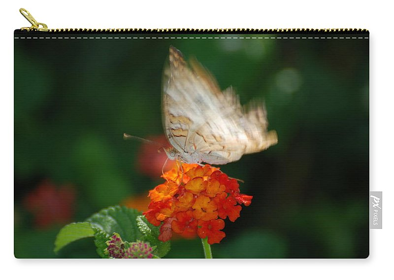 Butterfly Carry-all Pouch featuring the photograph In Living Color by Rob Hans
