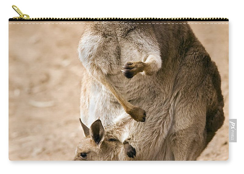 Kangaroo Carry-all Pouch featuring the photograph In Mother's Care by Mike Dawson