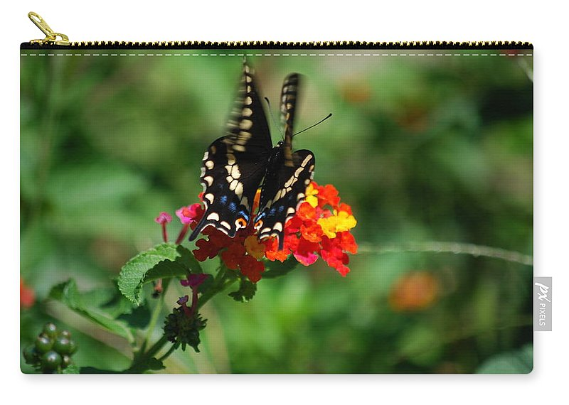 Swallowtail Carry-all Pouch featuring the photograph In Motion by Lori Tambakis