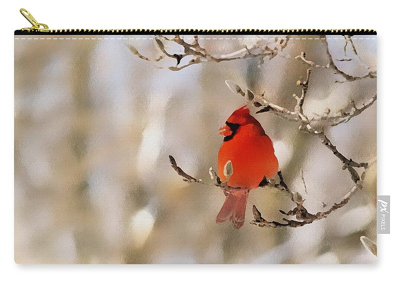 Cardinal Carry-all Pouch featuring the photograph In Red by Gaby Swanson