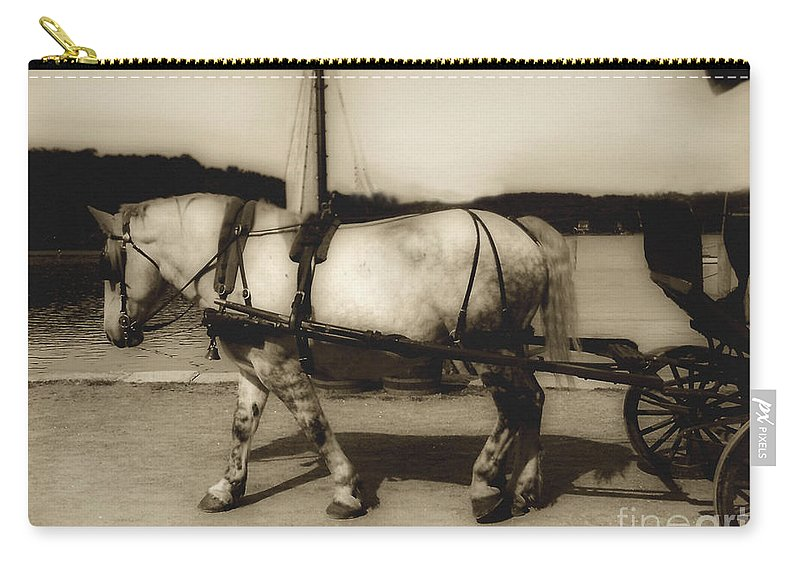 Horse Carry-all Pouch featuring the photograph In The Cool Of The Evening by RC DeWinter