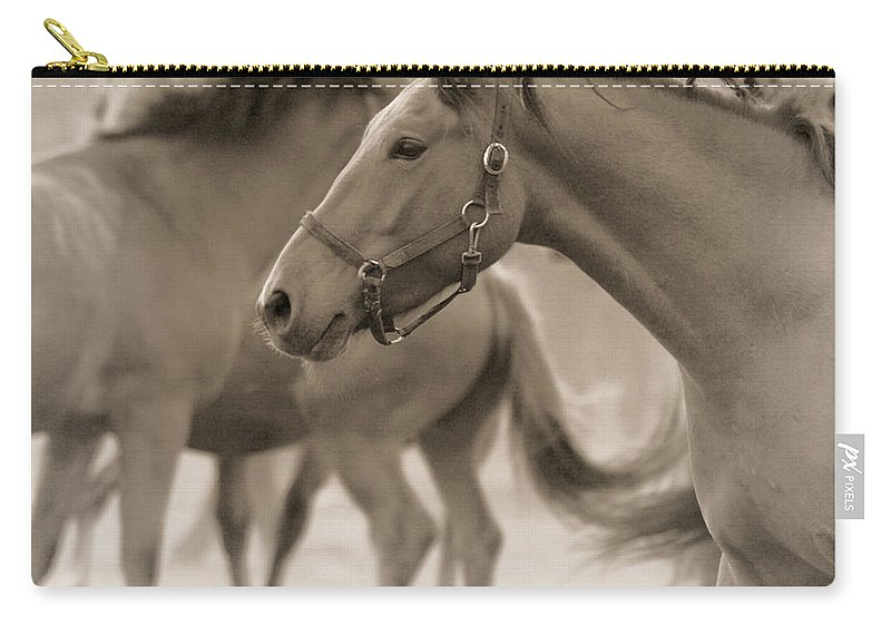 Horses Carry-all Pouch featuring the photograph In The Dust by Angel Ciesniarska