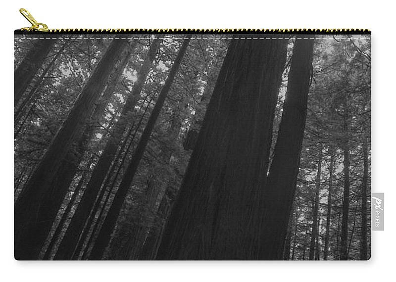 Nature Carry-all Pouch featuring the photograph In The Forest by John K Sampson