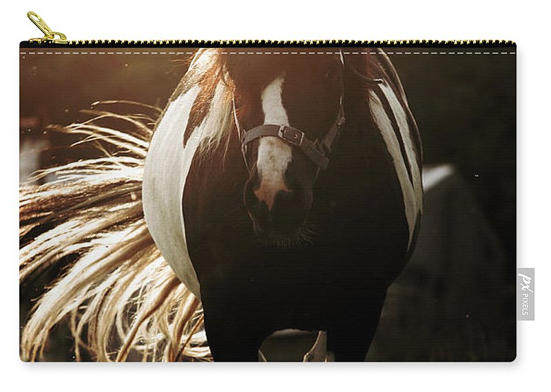 Horse Carry-all Pouch featuring the photograph In The Last Rays Of Setting Sun by Angel Tarantella