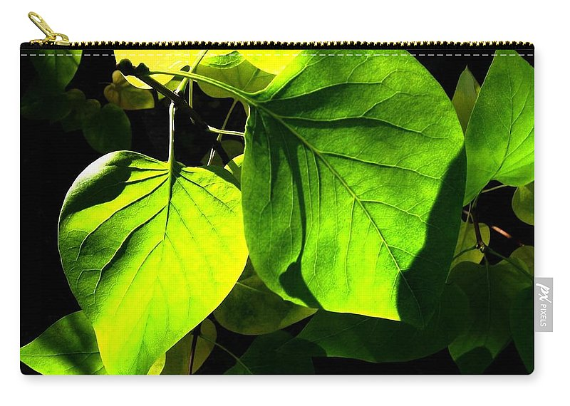 Lilac Leaves Carry-all Pouch featuring the photograph In The Limelight by Will Borden