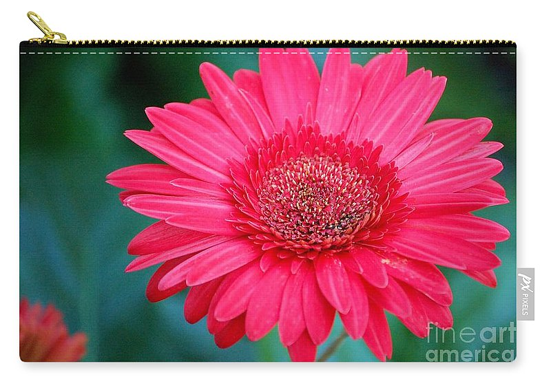 Gerber Daisy Carry-all Pouch featuring the photograph In The Pink by Debbi Granruth