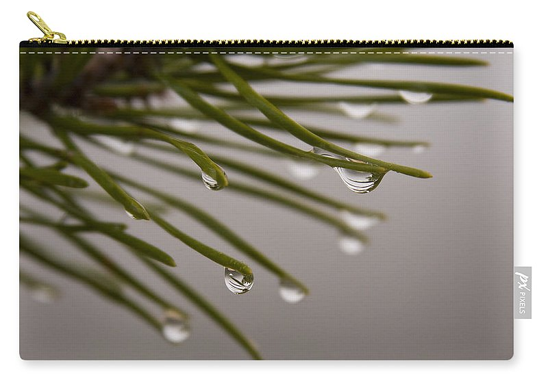 Pine Tree Needle Drop Droplet Reflection Rain Green Fog Foggy Nature Outdoors Hike Carry-all Pouch featuring the photograph In The Rain by Andrei Shliakhau