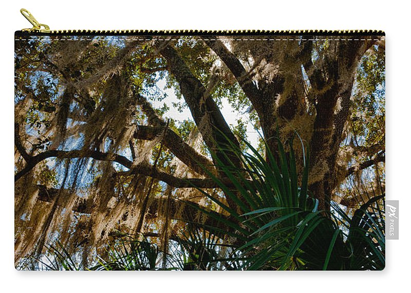 Botanical Carry-all Pouch featuring the photograph In The Shade Of A Florida Oak by Christopher Holmes