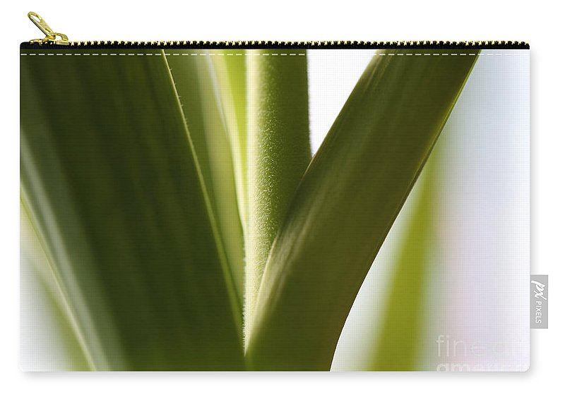 Leaves Carry-all Pouch featuring the photograph In The Spotlight Of Support by Amanda Barcon