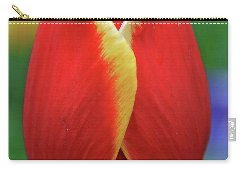 Flowers Carry-all Pouch featuring the photograph In The Spring by Scott Mahon