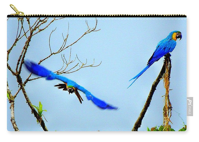 Macaws Carry-all Pouch featuring the photograph In The Wild by Karen Wiles