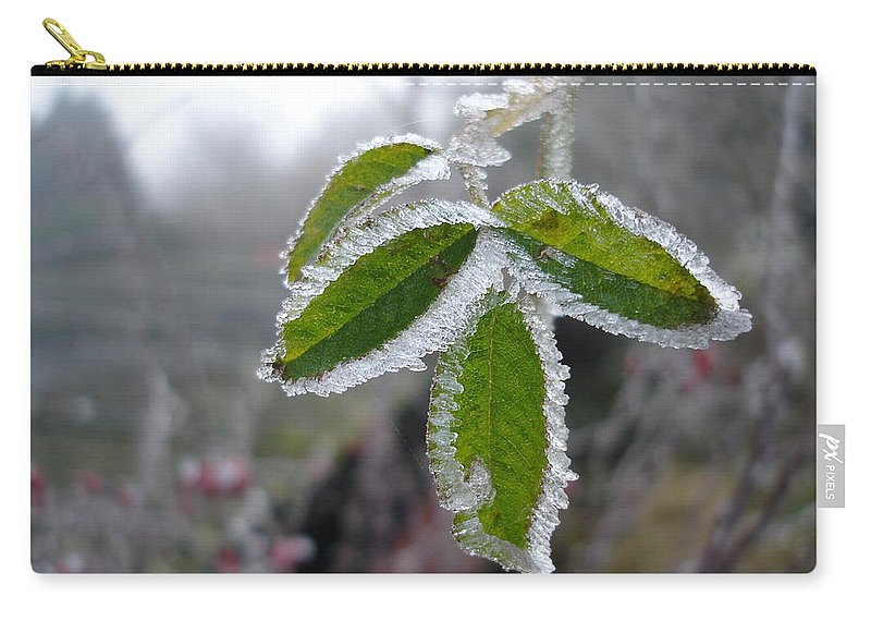 Winter Carry-all Pouch featuring the photograph In The Winter Sunlight by Susan Baker
