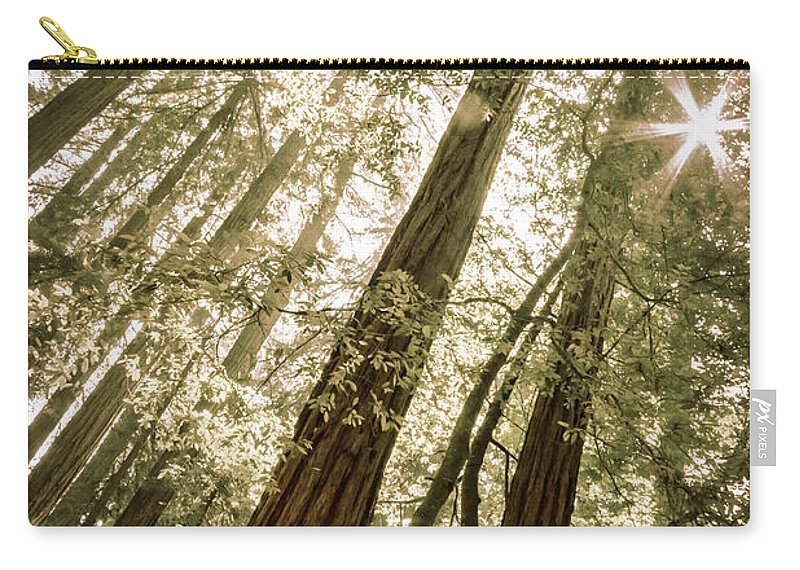 Trees Carry-all Pouch featuring the photograph In The Woods 3 by Ana V Ramirez