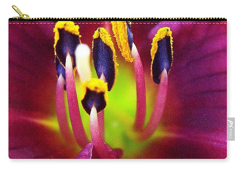 Floral Carry-all Pouch featuring the photograph In Vein by Marla McFall