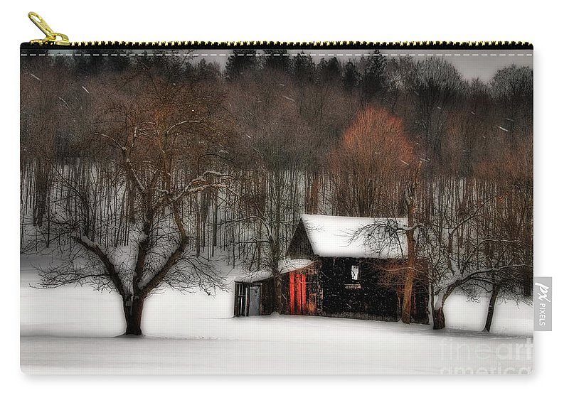 Winter Carry-all Pouch featuring the photograph In Winter by Lois Bryan
