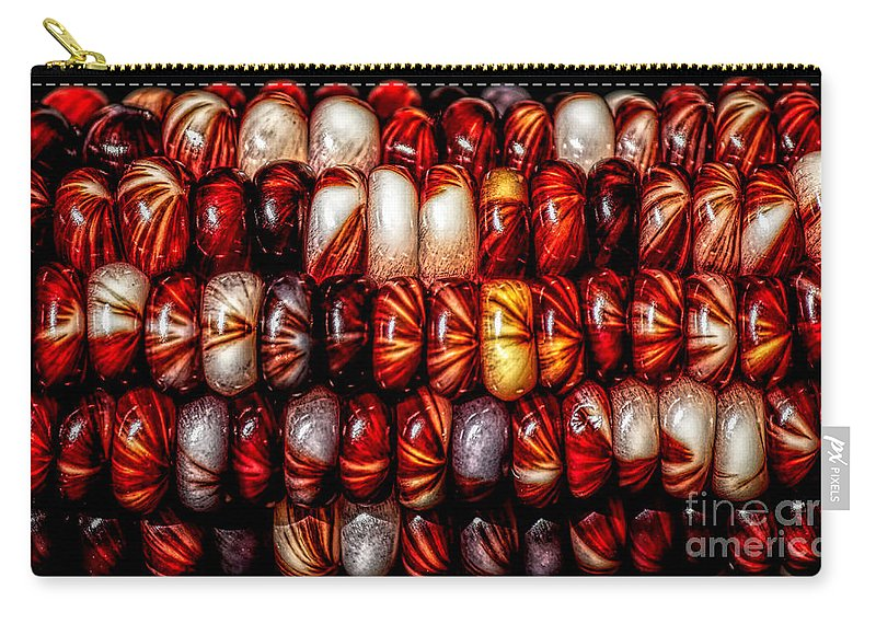 Corn Carry-all Pouch featuring the photograph Indian Corn by James Taylor