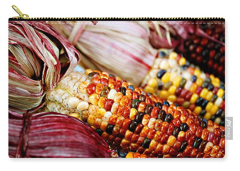 Corn Carry-all Pouch featuring the photograph Indian Corn by Marilyn Hunt