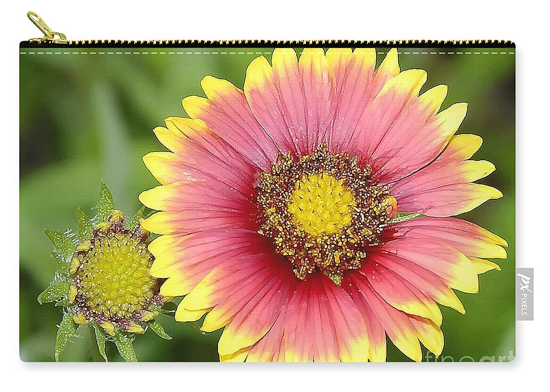 Indian Paintbrush Carry-all Pouch featuring the photograph Indian Paintbrush by David Lee Thompson