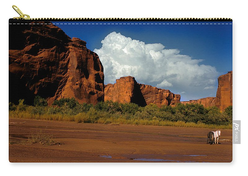 Horses Carry-all Pouch featuring the photograph Indian Ponies In The Canyon by Jerry McElroy