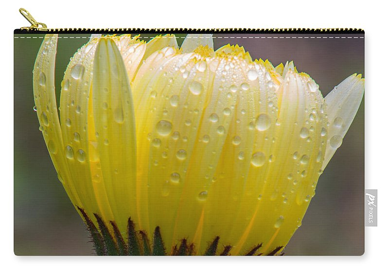 Flower Carry-all Pouch featuring the photograph Inner Glow by Dana Crandell