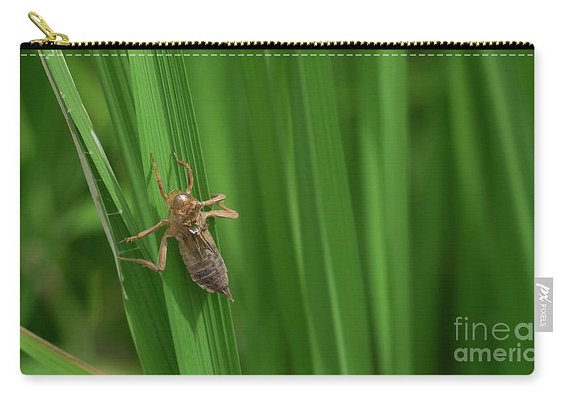 Insect Carry-all Pouch featuring the photograph Insect Stain On The Leaf by Que Siam