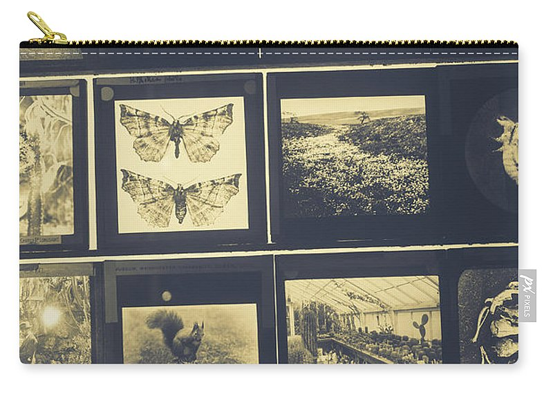 Monochrome Carry-all Pouch featuring the photograph Insects by David Ridley