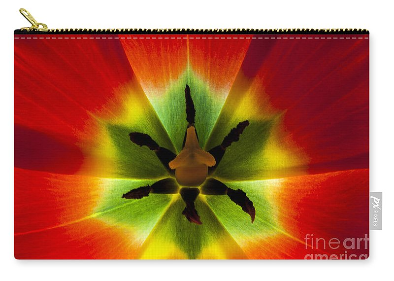 Flora Carry-all Pouch featuring the photograph Inside Glow by Donna Gonzales