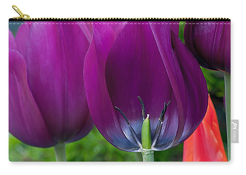 Inside Carry-all Pouch featuring the photograph Inside Tulip by Emerald Studio Photography
