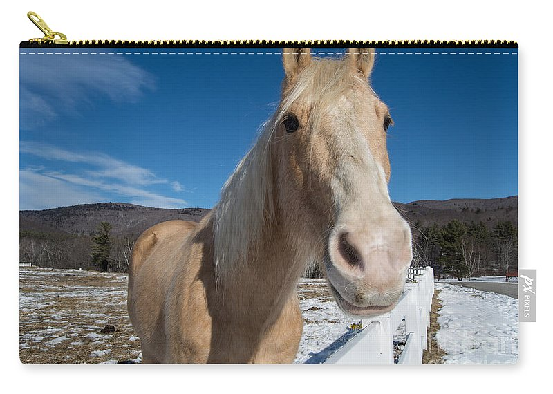 Horse Carry-all Pouch featuring the photograph Interested by Mim White