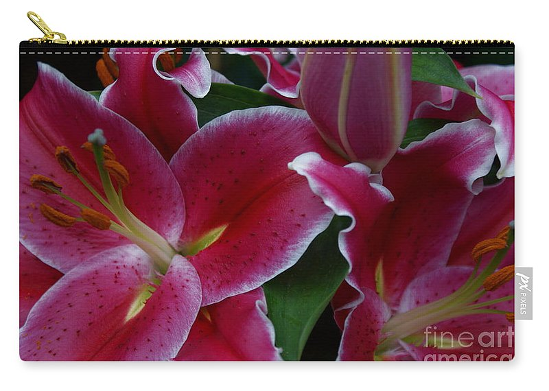 Lilies Carry-all Pouch featuring the photograph Intimate by Joanne Smoley