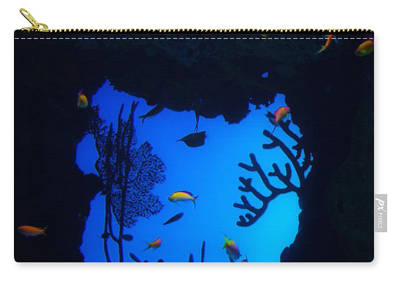 Into Another World Carry-all Pouch featuring the photograph Into Another World by Karol Livote