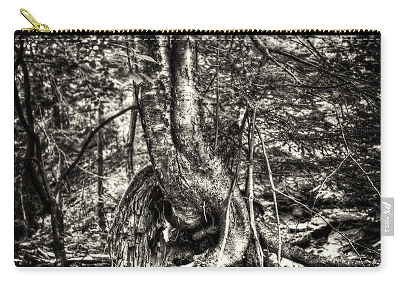 Hdr Carry-all Pouch featuring the photograph Intwined by Scott Wyatt