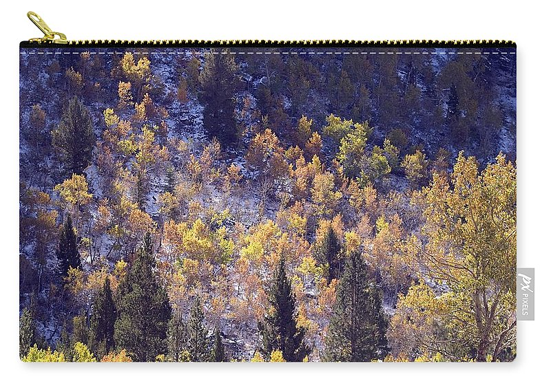 Western Scenes Carry-all Pouch featuring the photograph Inyo Aspens by Norman Andrus