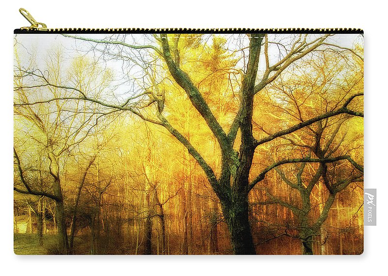 Tree Carry-all Pouch featuring the digital art Ipswich 2 by Terry Davis