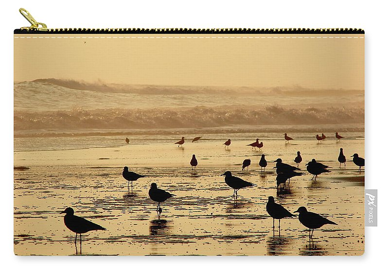 Iquique Carry-all Pouch featuring the photograph Iquique Chile Seagulls by Brett Winn