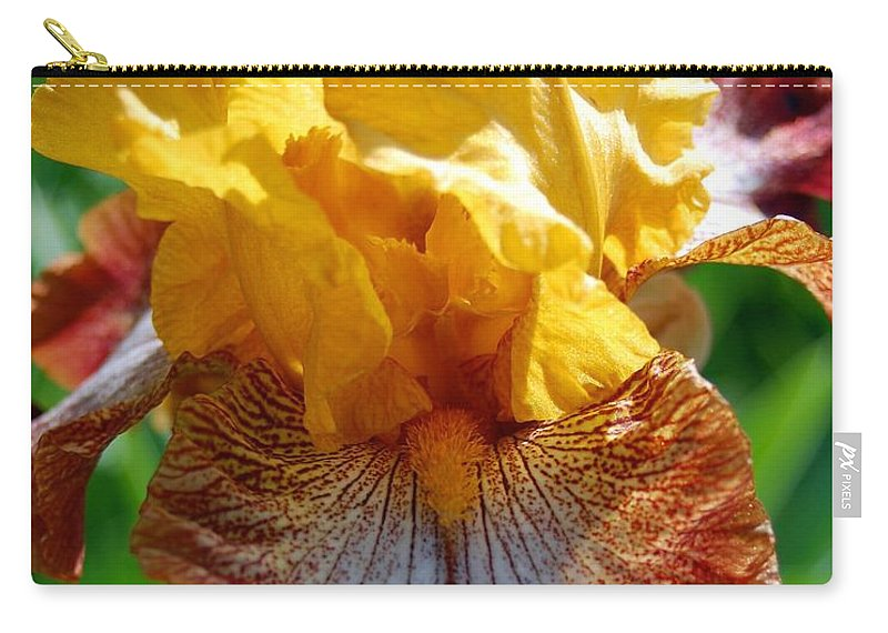 Flower Carry-all Pouch featuring the photograph Iris 1 by Amy Fose