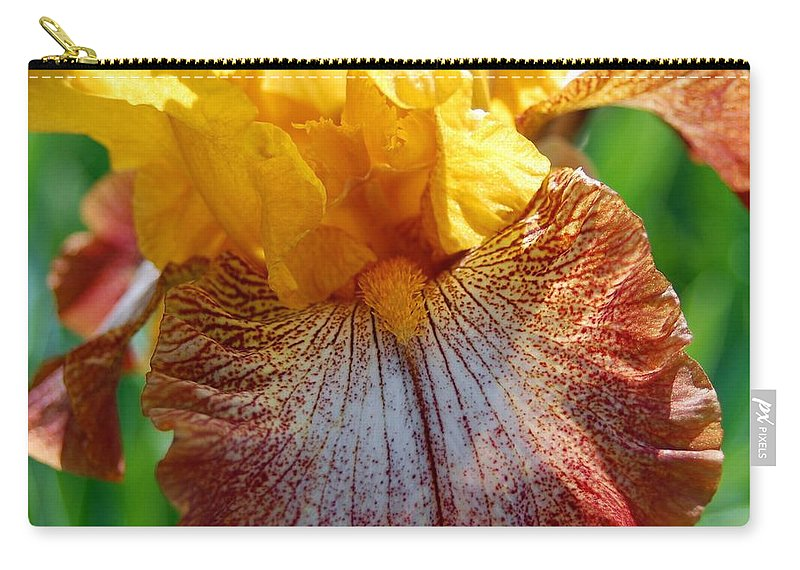 Iris Carry-all Pouch featuring the photograph Iris 2 by Amy Fose
