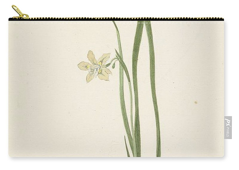 Flower Carry-all Pouch featuring the painting Iris Cornelis Van Noorde, 1741 1795 by Iris