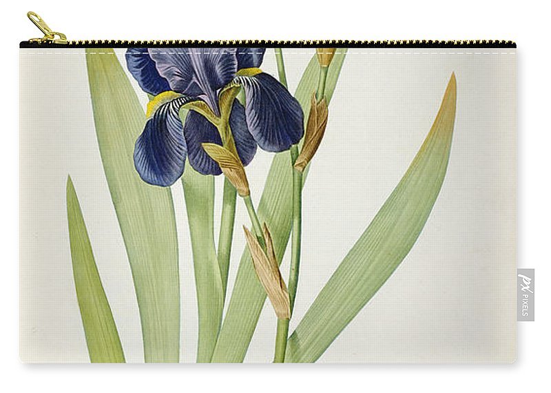 Iris Carry-all Pouch featuring the painting Iris Germanica by Pierre Joseph Redoute