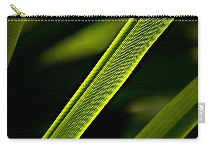 Garden Carry-all Pouch featuring the photograph Iris Leaves by Onyonet Photo Studios
