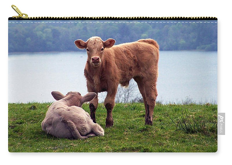 Ireland Carry-all Pouch featuring the photograph Irish Calves At Lough Eske by Teresa Mucha