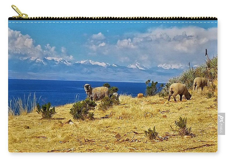 Island Carry-all Pouch featuring the photograph Isla de Obejas by Drew Hutto
