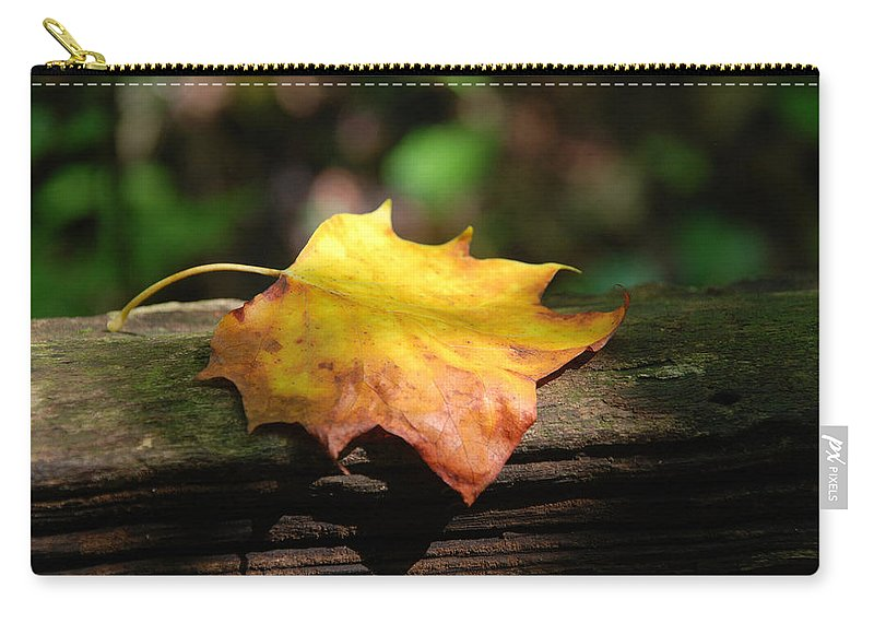 Photography Carry-all Pouch featuring the photograph Its Fall by Susanne Van Hulst