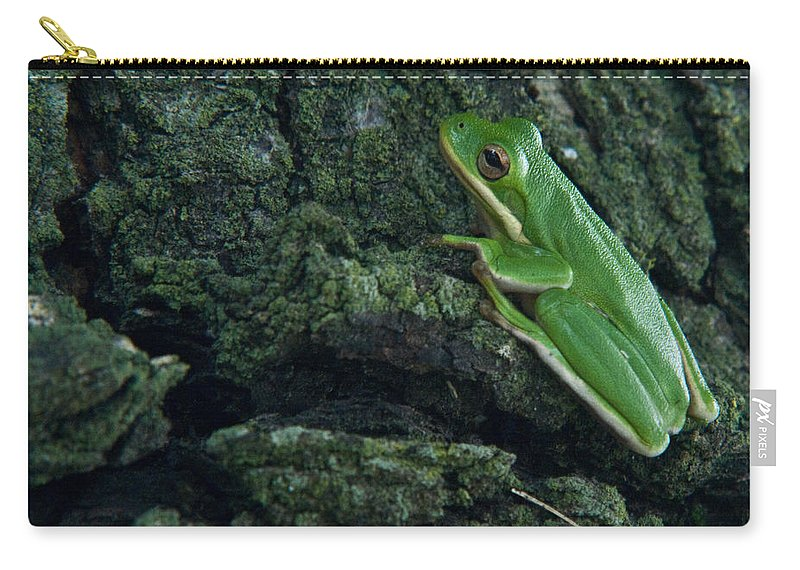 Frog Carry-all Pouch featuring the photograph Its Hard To Be Green by Douglas Barnett