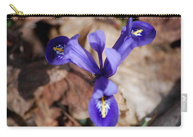 Digital Photography Carry-all Pouch featuring the photograph It's Spring 2010 by David Lane