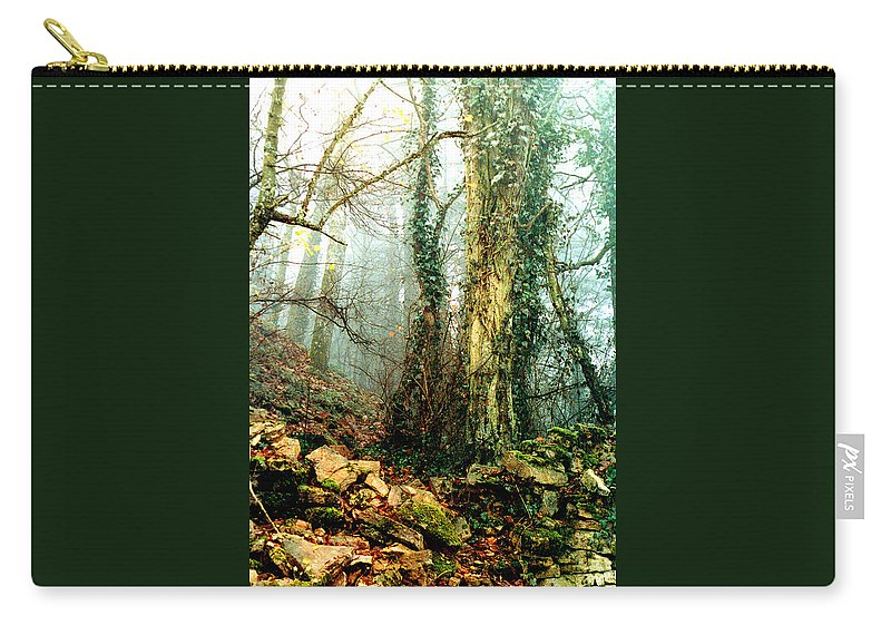 Ivy Carry-all Pouch featuring the photograph Ivy In The Woods by Nancy Mueller