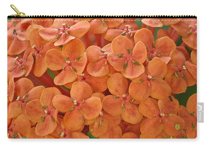 Ixora Carry-all Pouch featuring the photograph Ixora Moriwaki by Michael Peychich